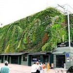 jardines verticales mallorca