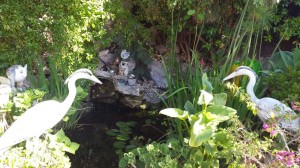 jardineros-mallorca-17