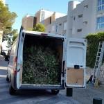 jardineros-mallorca-30