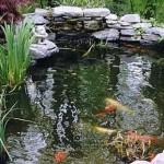 jardineros-mallorca-4
