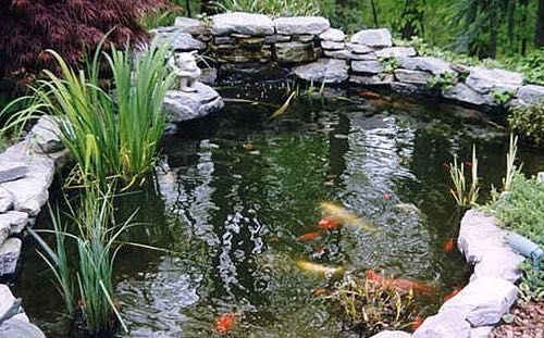 Construccion de cascadas y fuentes podas y jardines mallorca - Estanque de jardin ...
