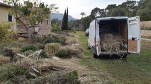 jardineros-mallorca-42