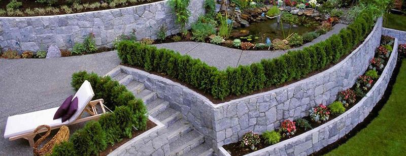 Mantenimiento de jardines en mallorca podas y jardines for Jardines mallorca