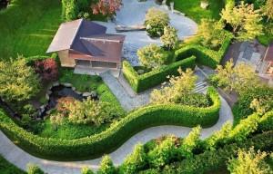 mantenimiento-de-jardines-mallorca-8