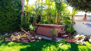 mantenimiento-de-jardines-mallorca-9