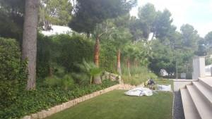 mantenimiento-jardines-1