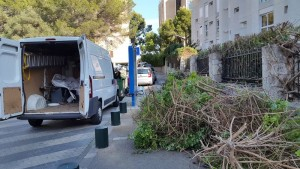 mantenimiento-jardines-13