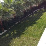 mantenimiento-jardines-15