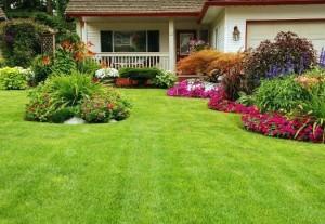 mantenimiento-jardines-40