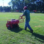 mantenimiento jardines mallorca