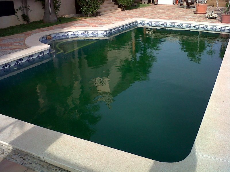 Mantenimiento de piscinas en mallorca podas y jardines - Piscinas en mallorca ...