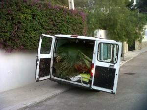 jardineros-en-mallorca-14