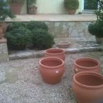 jardineros-en-mallorca-31
