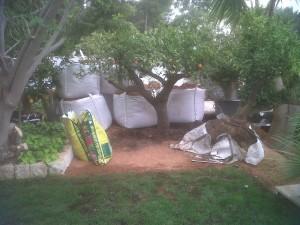 jardineros-en-mallorca-37