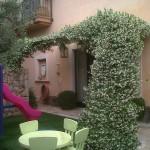 jardineros-en-mallorca-70