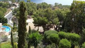 jardineros-en-mallorca-78