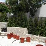 jardineros-en-mallorca-84