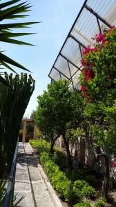jardineros-en-mallorca-91