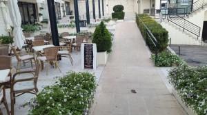 empresas-jardineria-mallorca-17