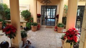 empresas-jardineria-mallorca-7