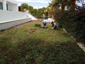 empresas-jardineria-mallorca-24