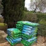 empresas-jardineria-mallorca-3