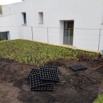 plantacion cesped mallorca